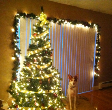 Brittany poses with our 2012 Christmas Tree