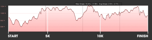 15k Elevation Map - I should have taken a look to know what I was up against.